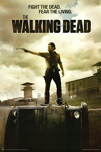 DVD 18 The Walking Dead